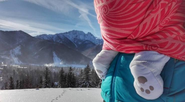 Miś polarny w Tatrach